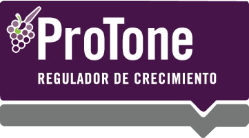 protone-agrosur